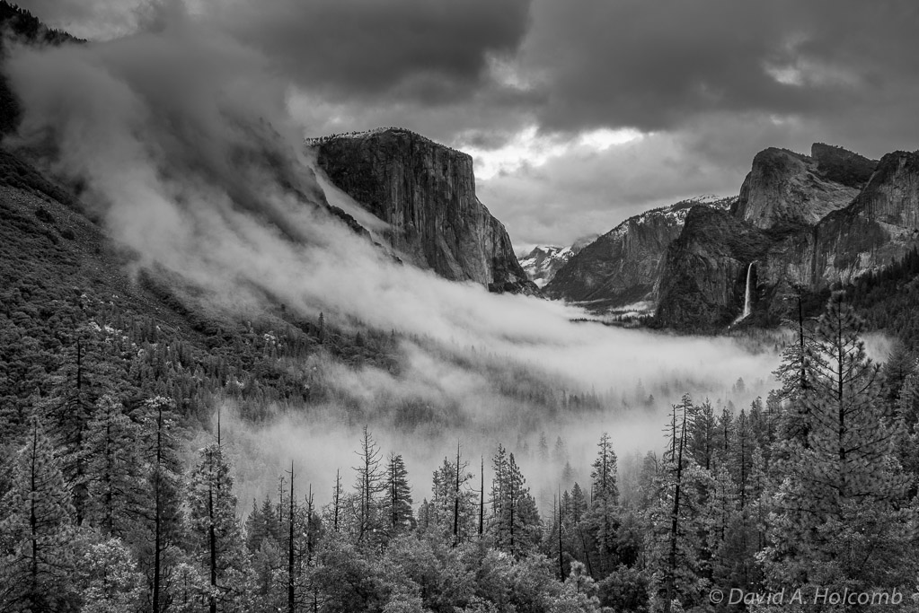 Tunnel view fog 3 in black and white